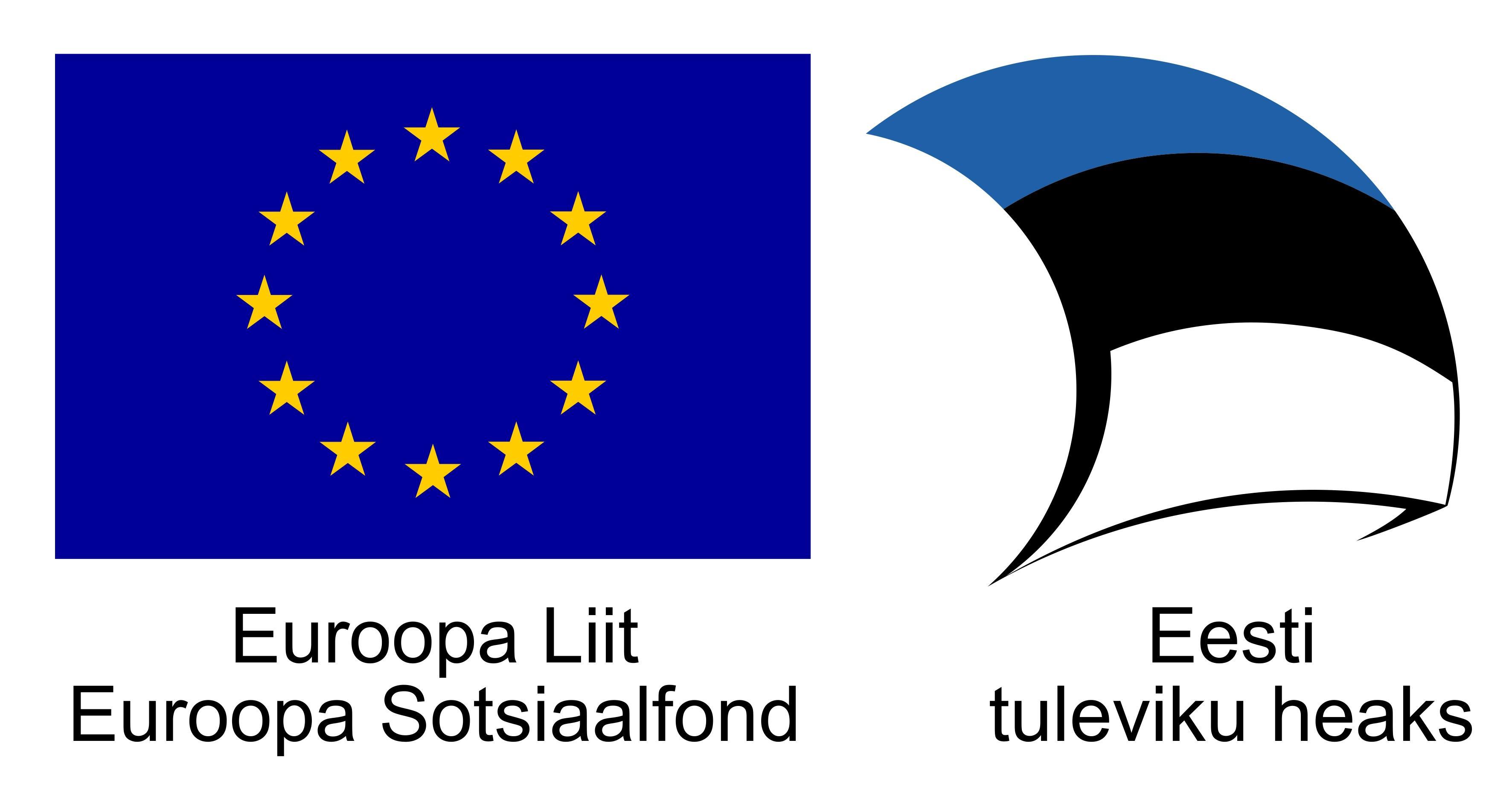 Euroopa Liit, Euroopa Sotsiaalfond, Eesti tuleviku heaks